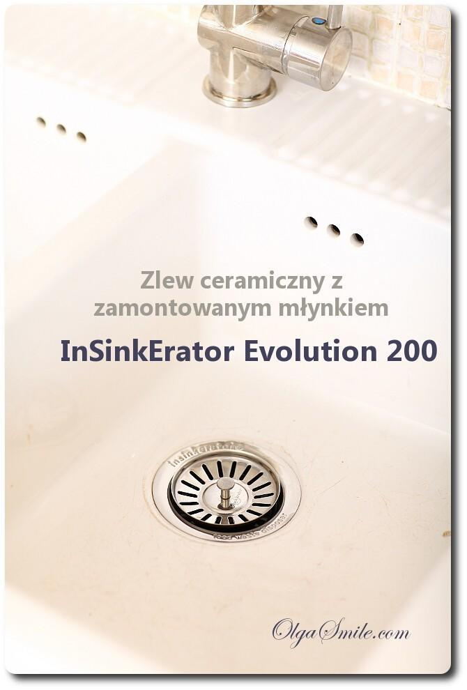 InSinkErator Evolution 200
