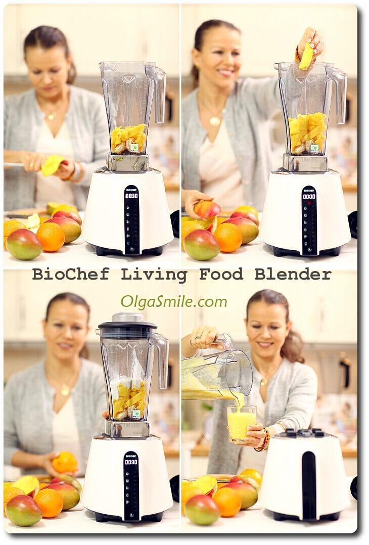 BioChef Blender
