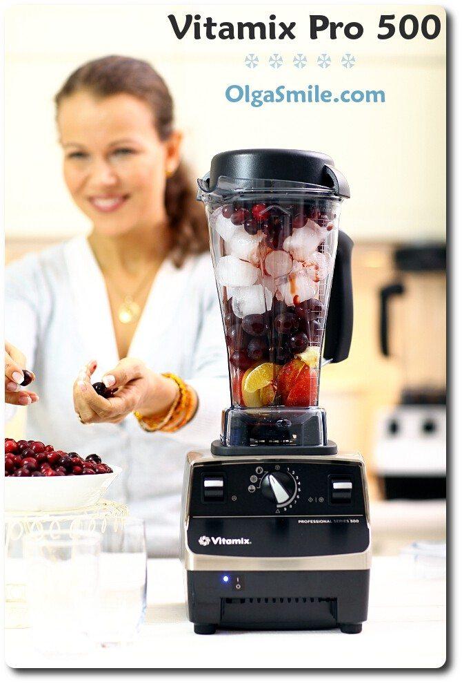 Blender Vitamix Pro 500