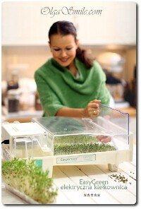 easy-green-kielkownica-555680-200