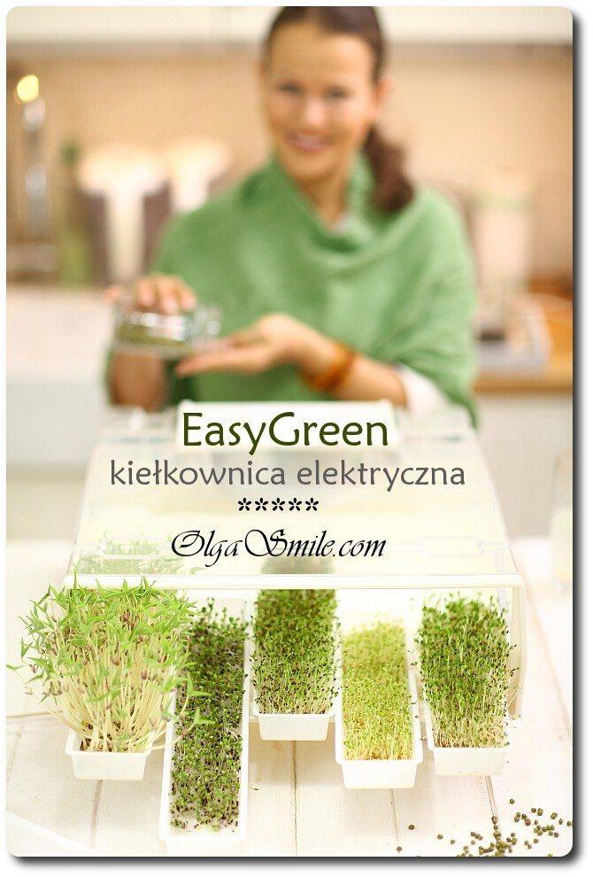 easy-green-kielkownica-55613