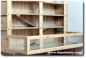 Klatka dla świnki morskiej Olgi Smile