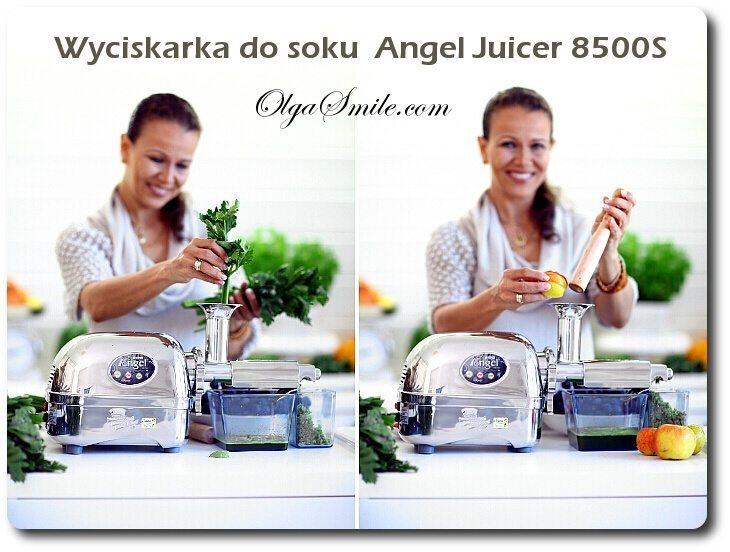 Angel Juicer 8500S