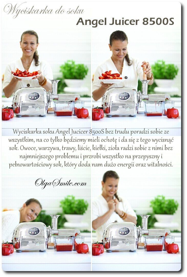 Wyciskarka do soku Angel Juicer 8500S