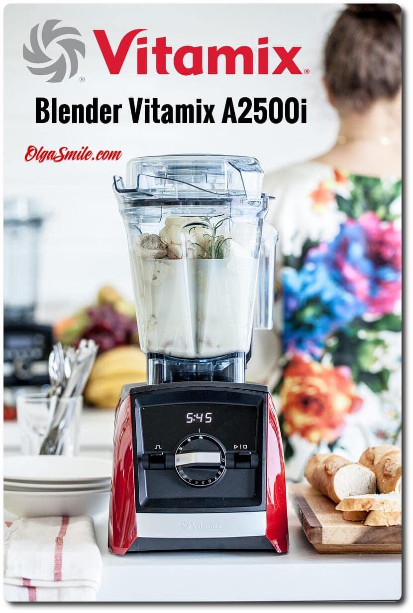 Vitamix A2500i