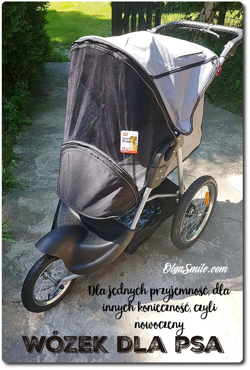 Wózek dla psa